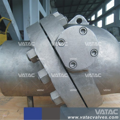 A216 Wcb Pn16/Pn40/64 Tilting Disc Wafer Check Valve pictures & photos