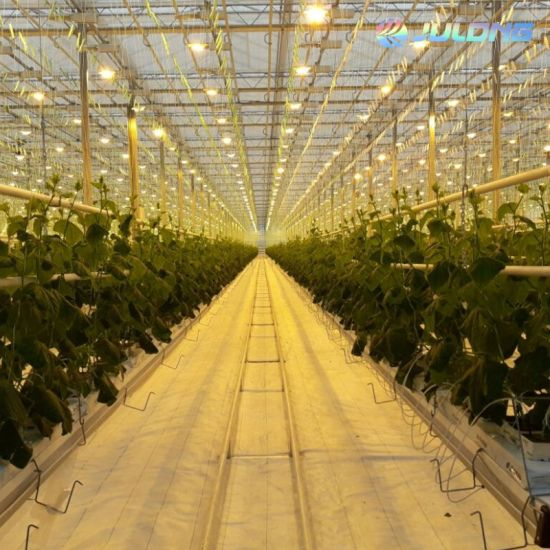 Fully Automated Light Deprivation Greenhouse for Vegetable Planting