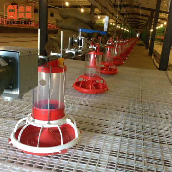 Goldenest Breeder Parent Stock Metering Cylinder Pan Feeding System