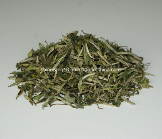 Functional Healthy Pai Mu Dan White Tea