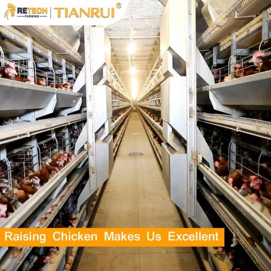 Best Price Automatic Layer Battery Chicken Cage Poultry Farm Equipment for Sale