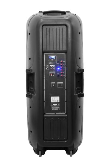 Dual Subwoofer 15 Inch Stage DJ Battery Speaker with bluetooth and Light