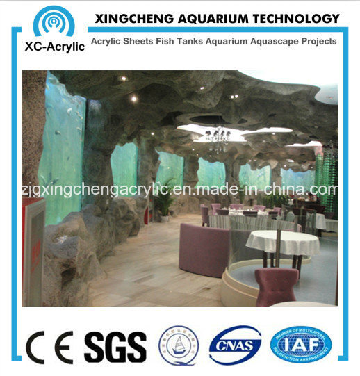 Acrylic Sheet for Aquarium/Factory Direct Sale pictures & photos