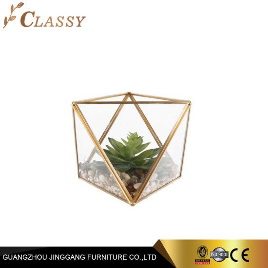 Fashion Desktop Gold Stainless Steel Glass Terrarium for Plant