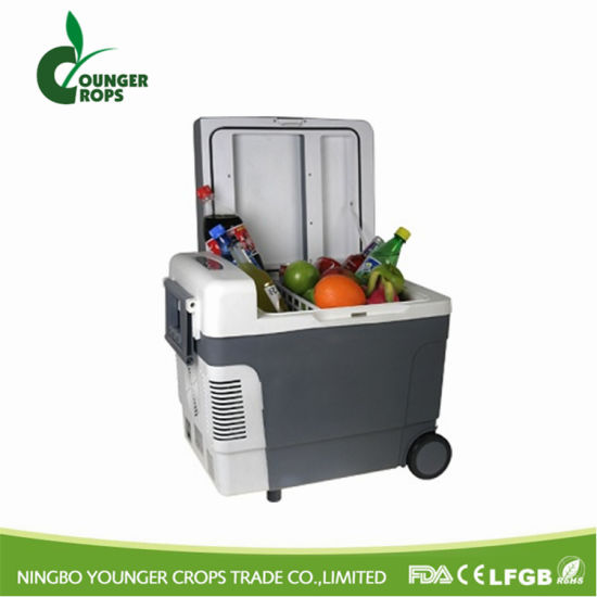 Car Cooler Box pictures & photos