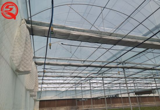 Agriculture/Commercial Double Layer Drip Irrigation Plastic Film Garden Greenhouse for Flowers/Vegetables/Fruits