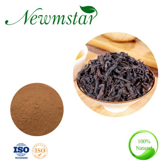 Hot Sales Water Soluble Oolong Tea Extract Powder Instant Tea Powder