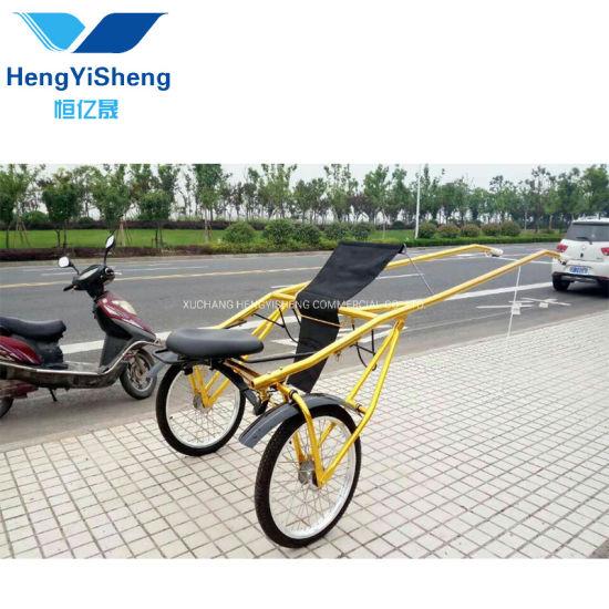 Factory Direct Sale Handwork Sports Car for Arena, Auto Rickshaw