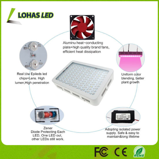 High 1000w Spectrum 1200w Grow 600w 300w Led Power Light Full 8PnOk0wX