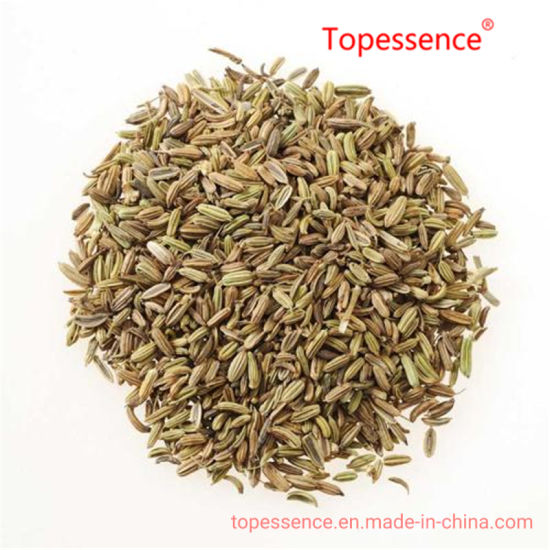 Best Quality Fennel Seeds From China
