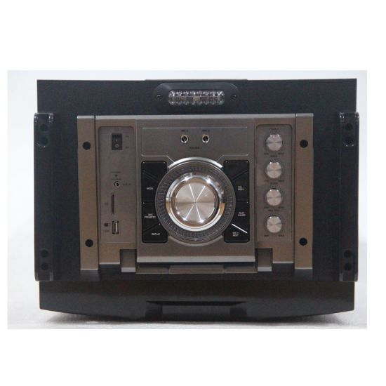 12inch DJ/Stage Professional Speaker with Remote Control pictures & photos
