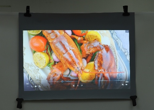 Pet Rear Projection Film for Glass / Holographic Display Screen