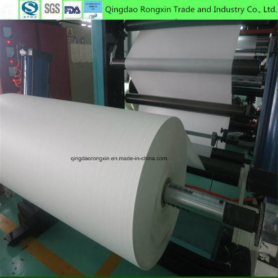 Single Side PE Coated Paper for Disposable Fast Consumption pictures & photos
