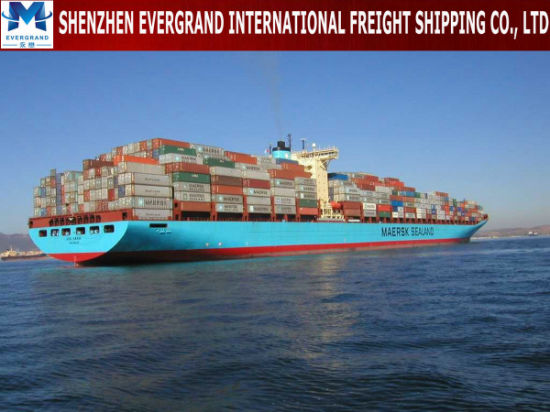 Sea Freight Door to Door From China to Zambia pictures & photos
