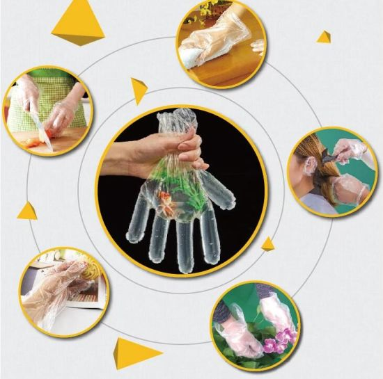 Ce, SGS Approved HDPE /LDPE Food Grade Disposable Transparent PE Gloves