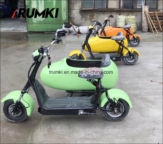 China Hot Sale New Arrival Mini Electric Bike Sidecar with