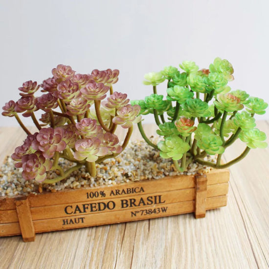 Competitive Price PVC Artificial Plant Succulent Decor Bonsai pictures & photos