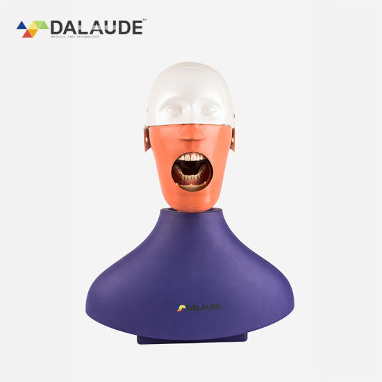 High Quality Electrical Oral Simulation Practice System