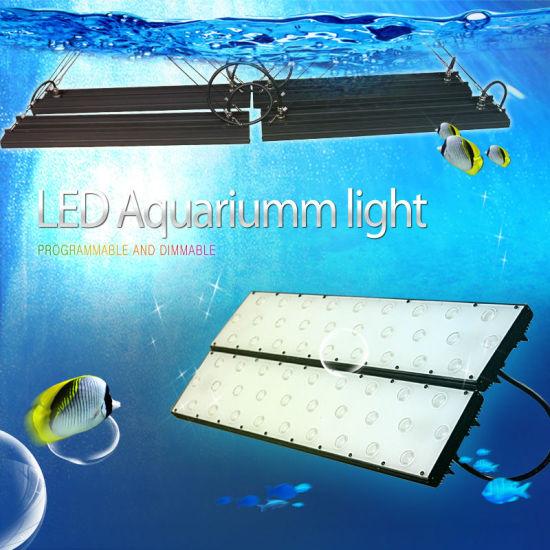 [Hot Item] Marine Aqaurium LED Light with Intelligent Controller (No Fan No  Noise Mimic Moon/Daylight)