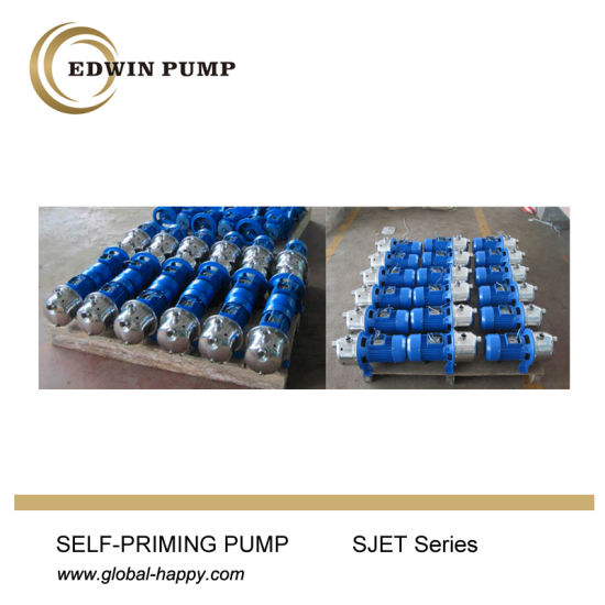 Household Self-Priming Jet Garden Pump pictures & photos
