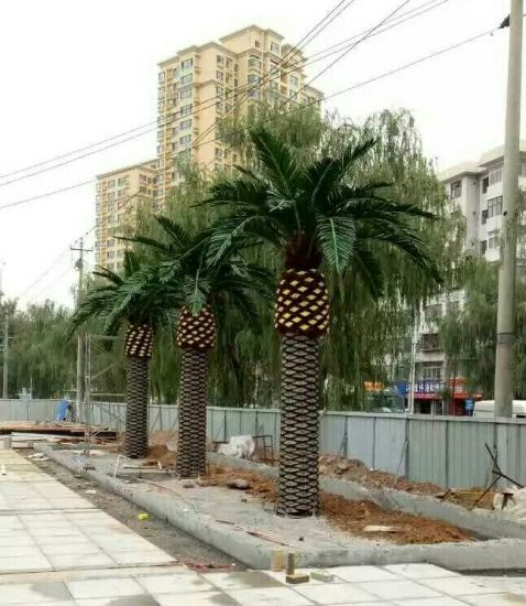 Artificial Plants and Flowers of Fan Palm 3.3m pictures & photos