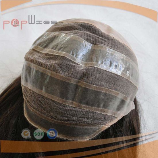 High Lights Color Women Full Handtied Silk Top Wig (PPG-l-01636) pictures & photos