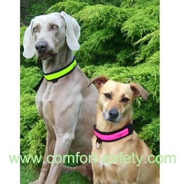 Designer Nylon Pet's Dog Collar