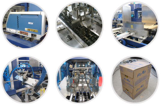 Case/Carton Packing Wrapper/Wrapping Machine (MG-XB25) pictures & photos