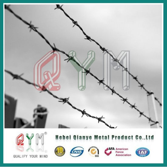 China Double Strand Barbed Wire/ Cattle Encloure Barbed Wire Fence ...