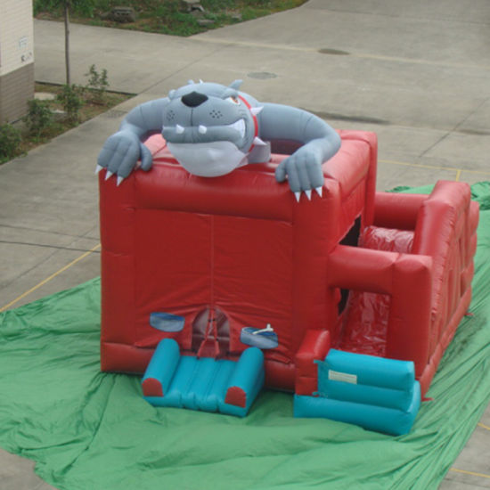 Inflatable Crocodile Bounce House pictures & photos