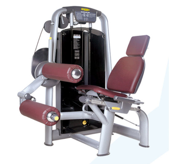 Professional Fitness Equipment/Commercial Gym Equipment Technogym Series  Seated Leg Curl