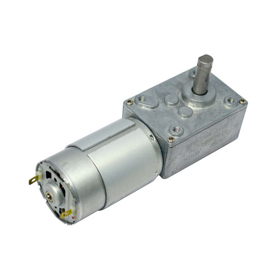 12V/24V Worm Gear Motor for Pump or Medical Equipment