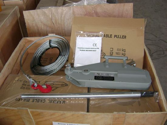 Wire Rope Winch Hoist Trifer Hoist pictures & photos