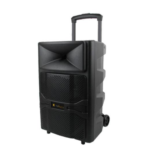 12 Inch PT-1265D 60W OEM Guangzhou Trolley Portable Bluetooth Speaker