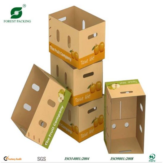 Corrugated Carton Box (FP11040) pictures & photos
