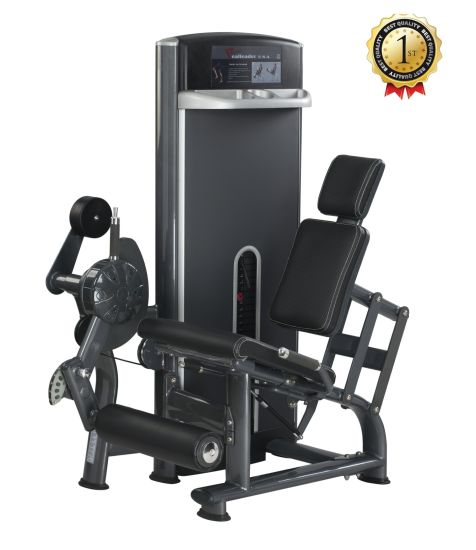 Fitness Equipment Seated Leg Extension pictures & photos