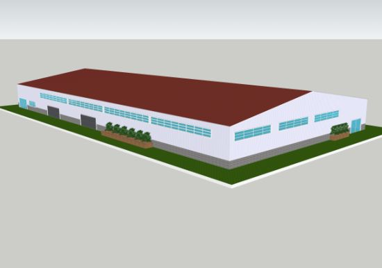 Customized Design Steel Structure Warehouse (SSW-348)