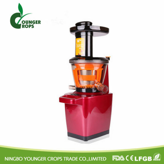 Manual Slow Juicer pictures & photos