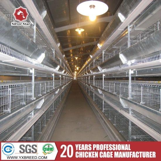 H Type Layer Chicken Cage