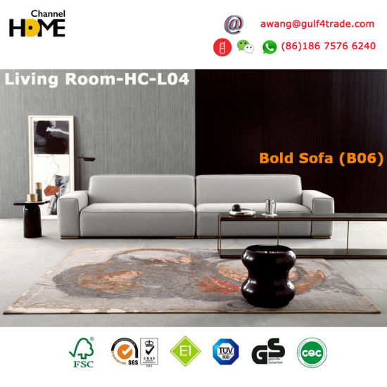 New Comfortable Harmonious and Modern Living Sofa (HC-T08) pictures & photos