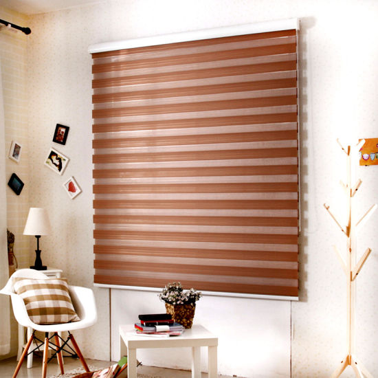 SKD Top Sale Manual Custom Roller Zebra Vertical Fabric Blinds pictures & photos