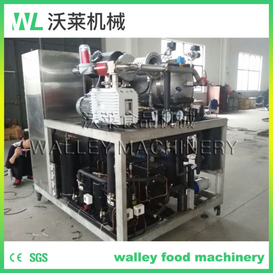 Laboratory Vacuum Freeze Drying Equipment for Experimental Use