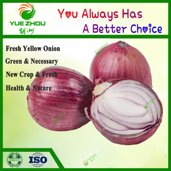 2019 Fresh 6-8cm Chinese Red Onions with High Quality pictures & photos