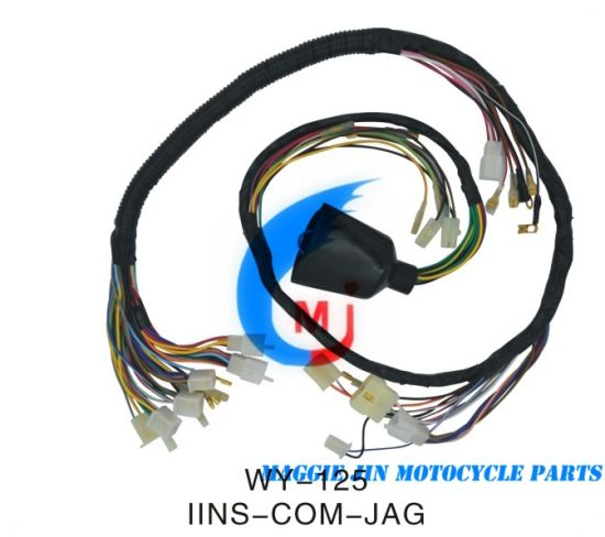 Pleasant China Motorcycle Parts Wire Harness For Motorcycle Wy125 China Wiring Cloud Aboleophagdienstapotheekhoekschewaardnl