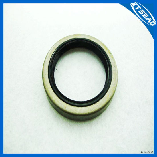Custom Size Hydraulic Jack Seal Oil Seal pictures & photos