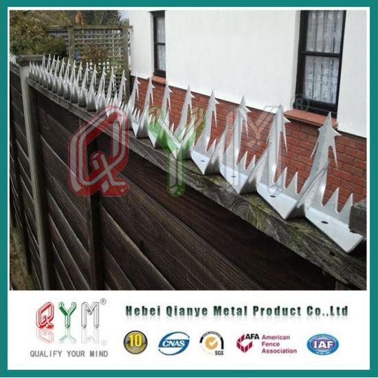 China High Secuirty Anti Climb Wall Spikes/ Galvanized Wall