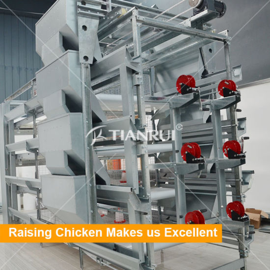 Poultry Farm Equipment Atomatic H type Baby Chicken Cage for Pullet