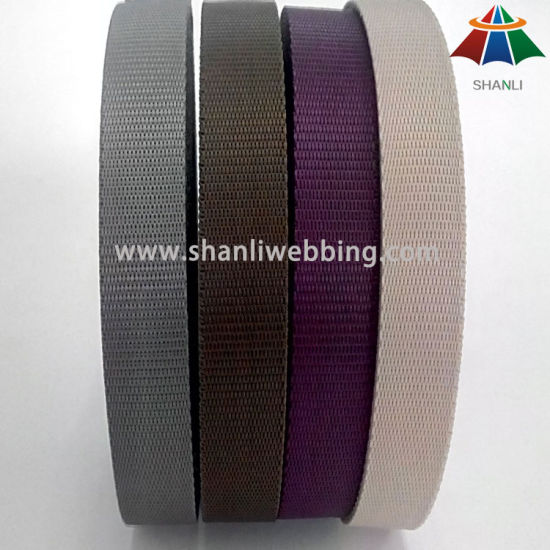 19 mm Flat PP Polypropylene Webbing