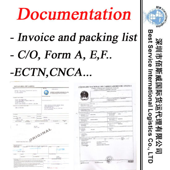 Freight Forwarder for Documentation Service -Logistics Service pictures & photos