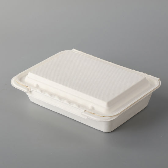 8''x8''biodegradable Sugarcane Bagasse Food Container Packaging